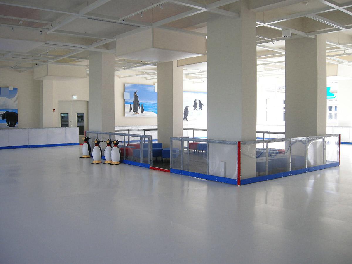 Bitterfeld Ice Free Indoor Kunsteis Anlage